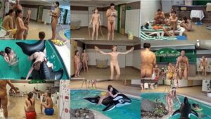 Read more about the article Family nudism video – Kids indoor dolphin ride