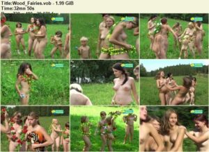 Read more about the article Naturist Freedom video – Wood fairies